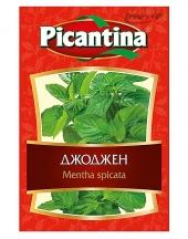 Mentha spicata Picantina