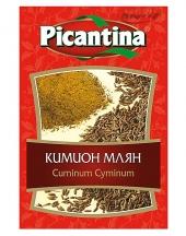 Cummin grounded Picantina